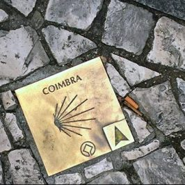 Coimbra Patrimonio de la HumanidadCoimbra Patrimonio de la Humanidad