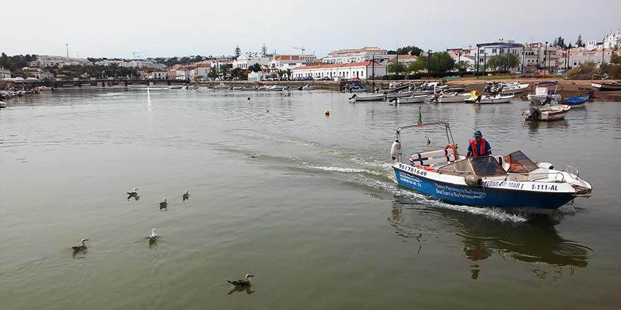 Tavira sigue siendo, abrazado por el turismo, un pueblo de pescadores