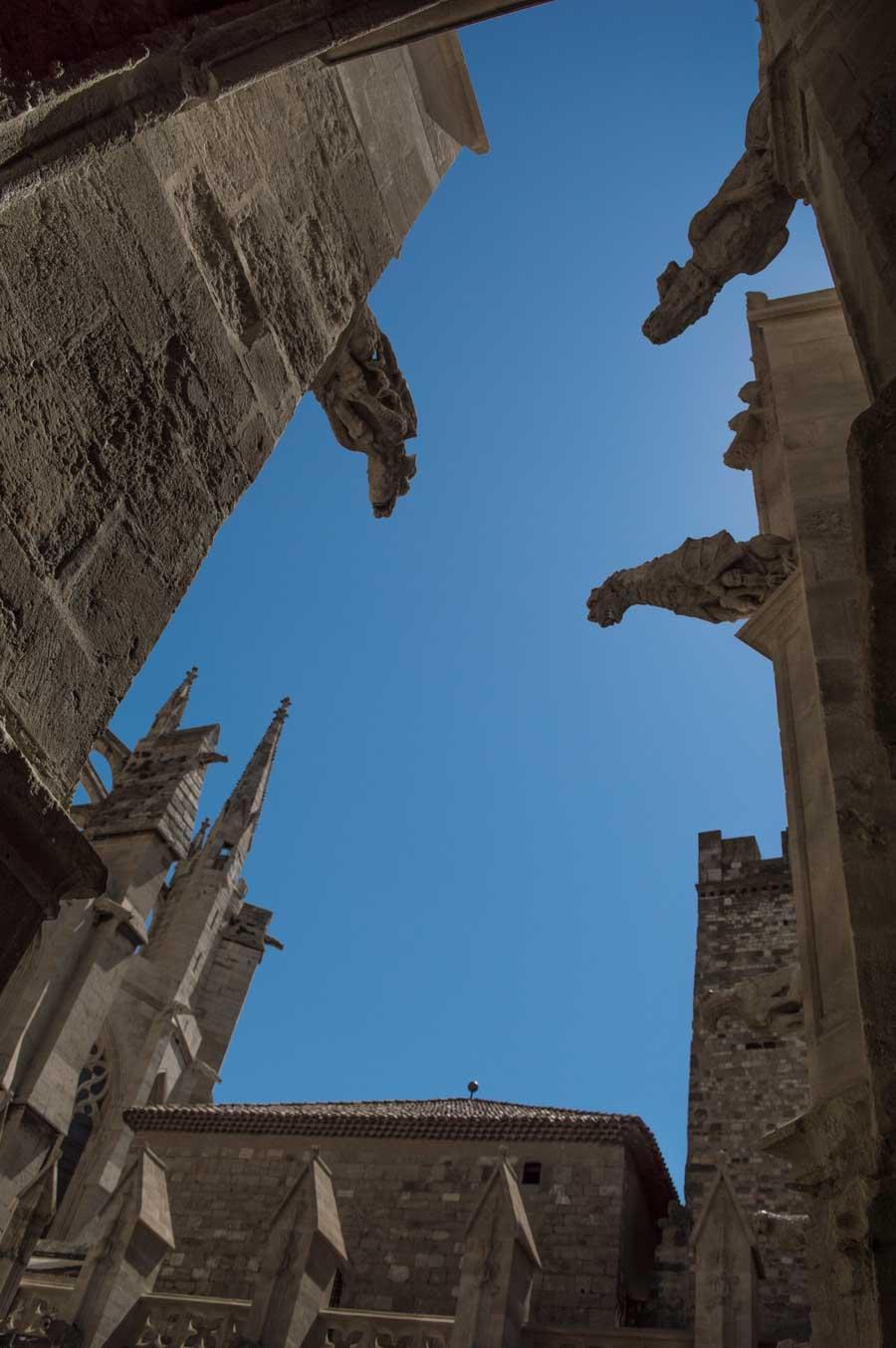 Las gárgolas de la catedral de Narbona