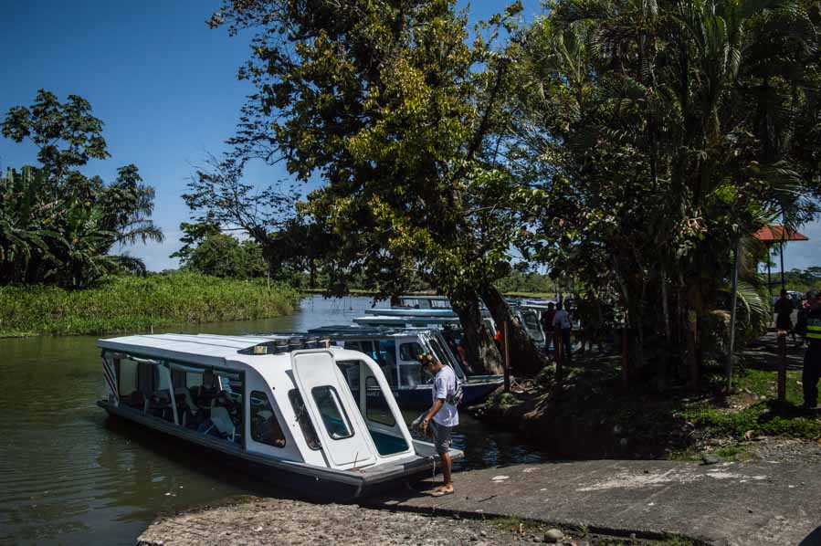 Embarcadero del Muelle Caño Blanco a Tortuguero