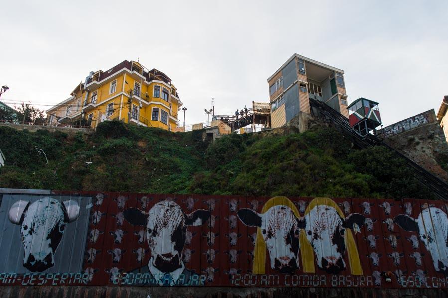 Capitalismo en el street art en Valparaíso